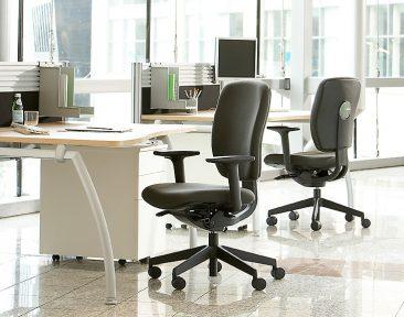 Dash chairs